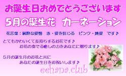 6月の誕生花バースデーカード